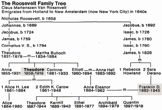Roosevelt family tree